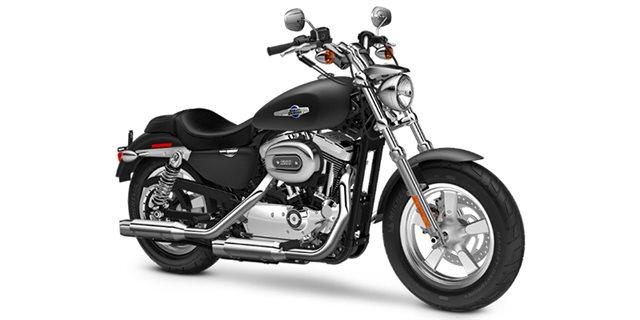 2016 Harley-Davidson Sportster 1200 Custom at Hampton Roads Harley-Davidson