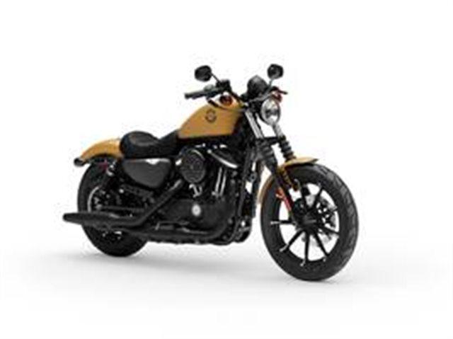 2019 Harley-Davidson XL 883N - Sportster Iron 883 at #1 Cycle Center Harley-Davidson