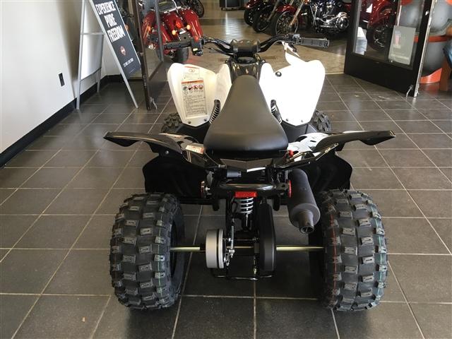 2019 Yamaha Raptor 90 at Champion Motorsports, Roswell, NM 88201