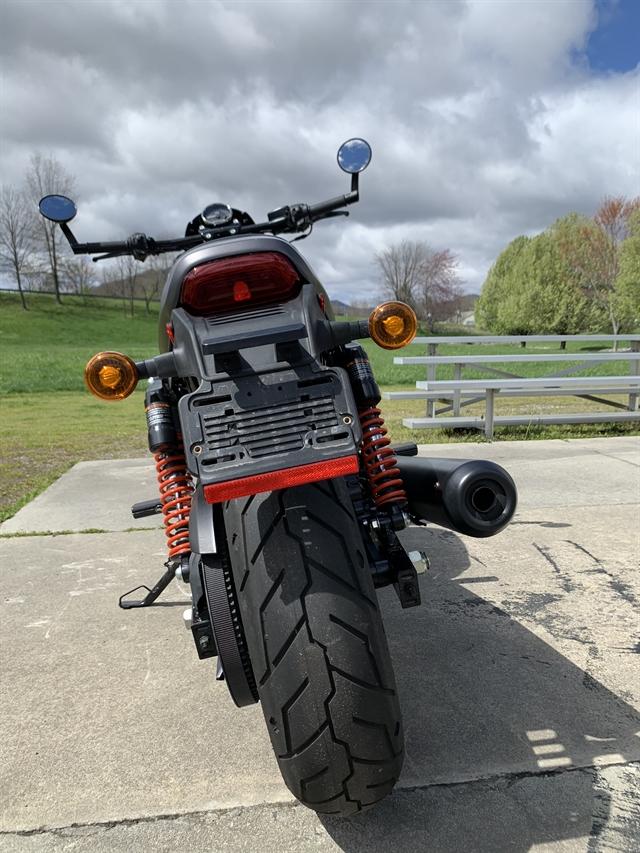 2017 Harley-Davidson Street Rod at Harley-Davidson of Asheville