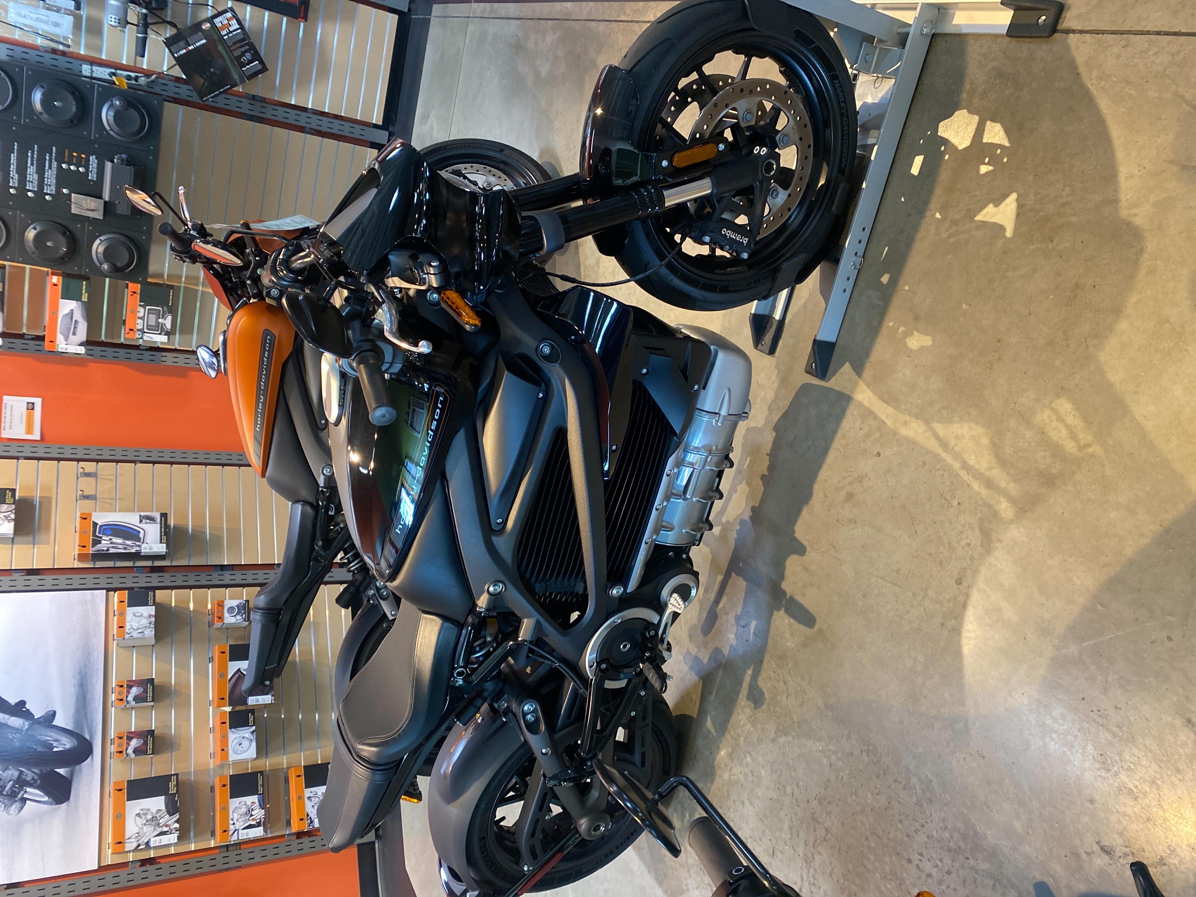 2020 HARLEY DAVIDSON ELW at Outpost Harley-Davidson