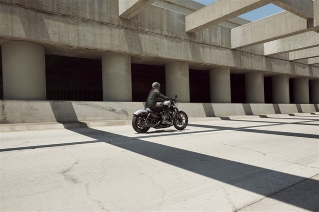 2020 Harley-Davidson Sportster Iron 883 at Suburban Motors Harley-Davidson