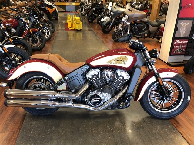 2020 Indian Scout - ABS at Got Gear Motorsports