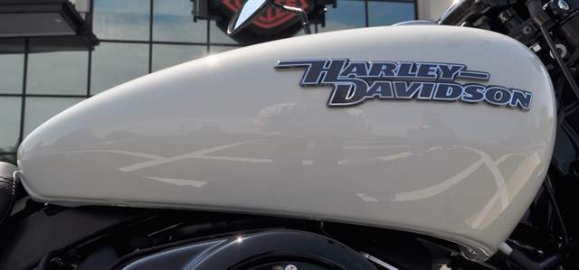 2019 Harley-Davidson Street 750 at All American Harley-Davidson, Hughesville, MD 20637