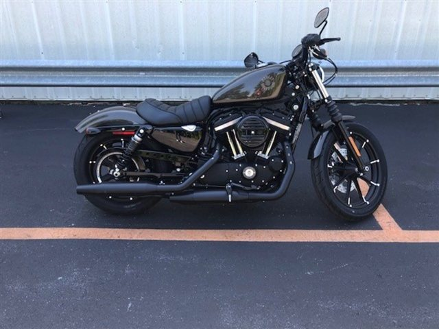2020 Harley-Davidson XL883N - Sportster Iron 883 at Gold Star Harley-Davidson