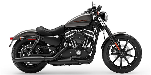 2019 Harley-Davidson Sportster Iron 883 at Southside Harley-Davidson