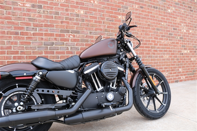2019 Harley-Davidson Sportster Iron 883 at Zylstra Harley-Davidson®, Ames, IA 50010