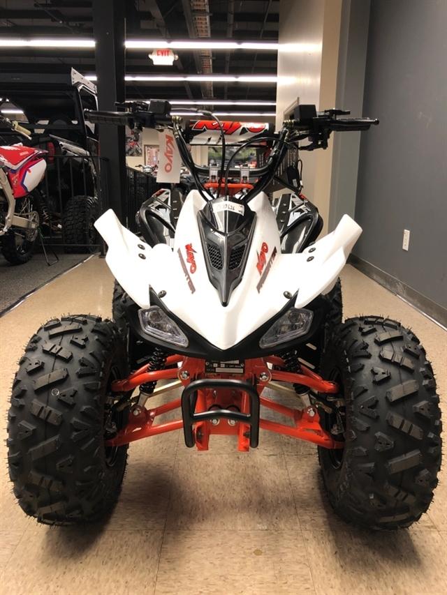 2020 KAYO USA, A & G Distributing PREDATOR 125 AT125-B-W at Sloans Motorcycle ATV, Murfreesboro, TN, 37129