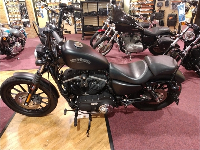 2013 Harley-Davidson Sportster 883 at #1 Cycle Center Harley-Davidson