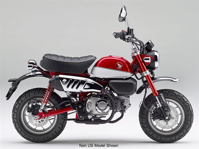2019 Honda Monkey Base at Genthe Honda Powersports, Southgate, MI 48195