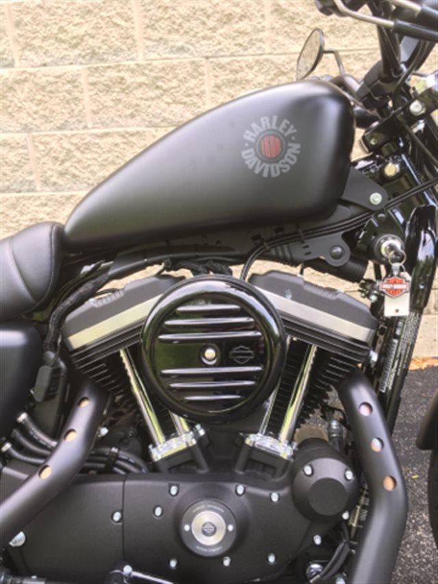 2019 Harley-Davidson Sportster Iron 883 at Bluegrass Harley Davidson, Louisville, KY 40299