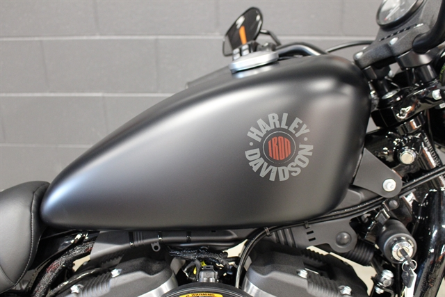 2021 Harley-Davidson XL883N at Harley-Davidson of Indianapolis