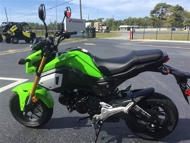 2019 Honda Grom Base at Kent Motorsports, New Braunfels, TX 78130