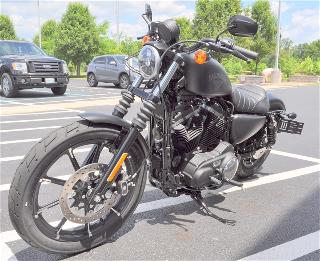 2017 Harley-Davidson Sportster Iron 883™ at All American Harley-Davidson, Hughesville, MD 20637