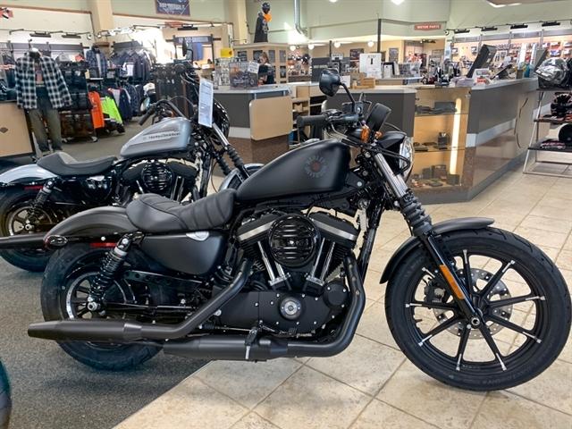 2020 Harley-Davidson XL883N at Destination Harley-Davidson®, Silverdale, WA 98383
