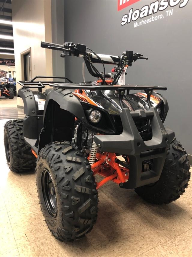 2019 KAYO USA, A & G Distributing BULL 125 BULL 125 at Sloans Motorcycle ATV, Murfreesboro, TN, 37129