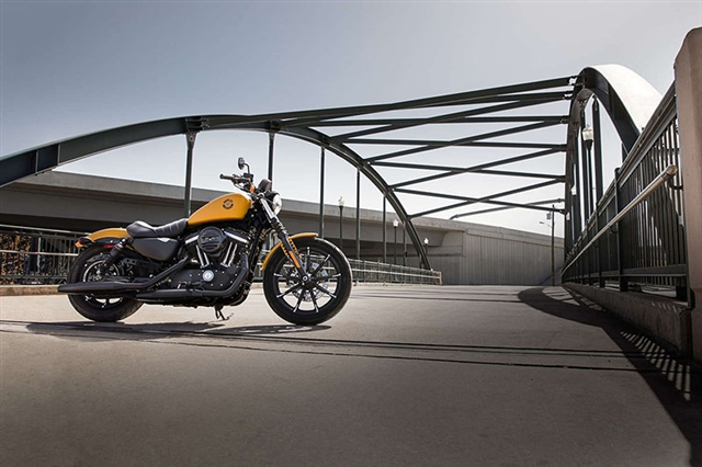 2019 Harley-Davidson Sportster Iron 883 at Harley-Davidson of Fort Wayne, Fort Wayne, IN 46804