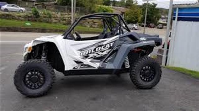 2019 Textron Off Road Wildcat XX at Kent Motorsports, New Braunfels, TX 78130