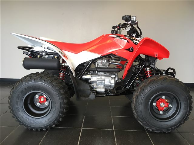 2017 Honda TRX 250X SE at Champion Motorsports, Roswell, NM 88201