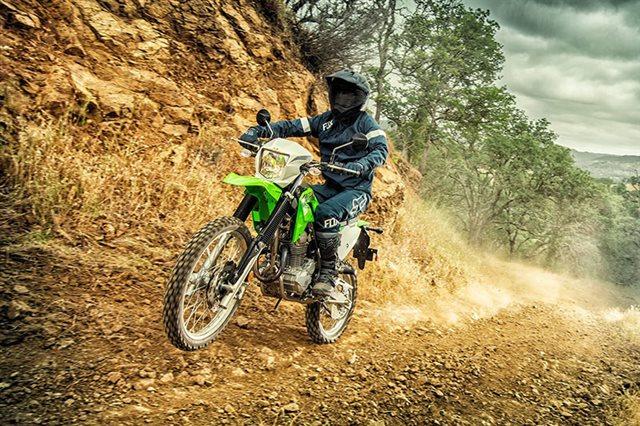 2020 Kawasaki KLX 230 at Ehlerding Motorsports