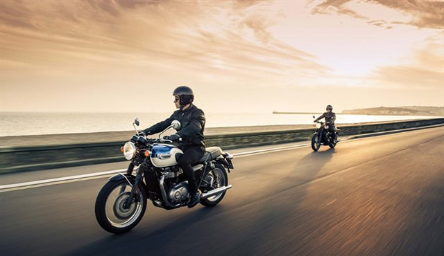 2019 Triumph Bonneville T100 Black at Yamaha Triumph KTM of Camp Hill, Camp Hill, PA 17011