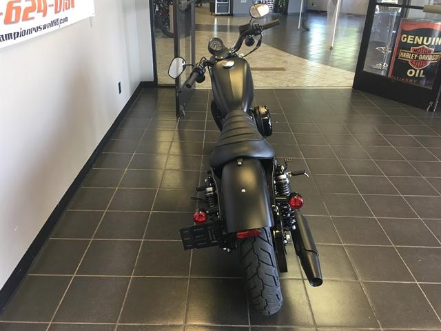 2019 Harley-Davidson Sportster Iron 883™ at Champion Harley-Davidson