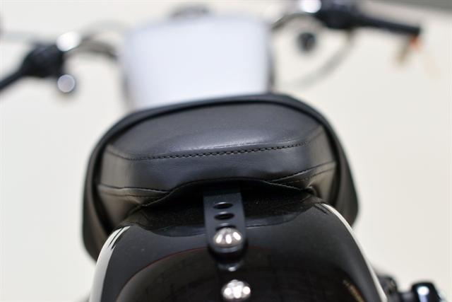 2020 Harley-Davidson Sportster Roadster at Destination Harley-Davidson®, Tacoma, WA 98424