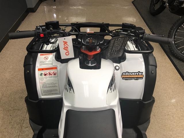 2019 KAYO USA BULL 150 BULL 150 at Sloans Motorcycle ATV, Murfreesboro, TN, 37129