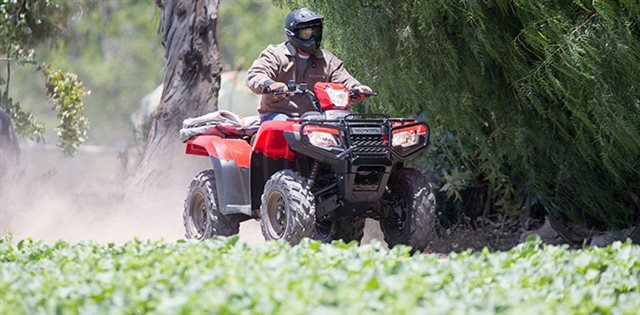 2016 Honda FourTrax Foreman Rubicon 4x4 EPS at ATVs and More