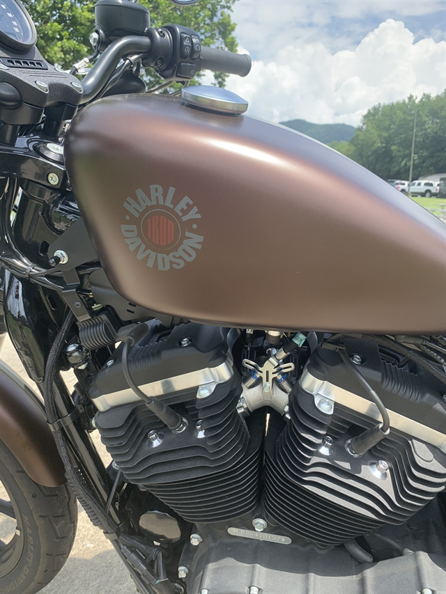 2019 Harley-Davidson XL883N at Harley-Davidson of Asheville