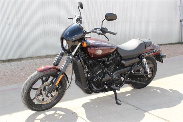 2019 Harley-Davidson Street 500 at Gruene Harley-Davidson