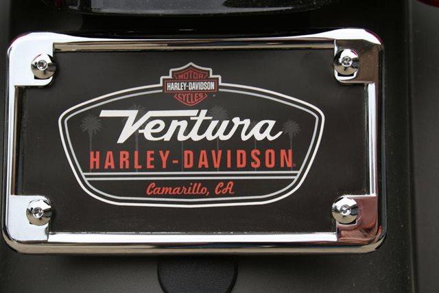 2019 Harley-Davidson Sportster Iron 883 at Ventura Harley-Davidson