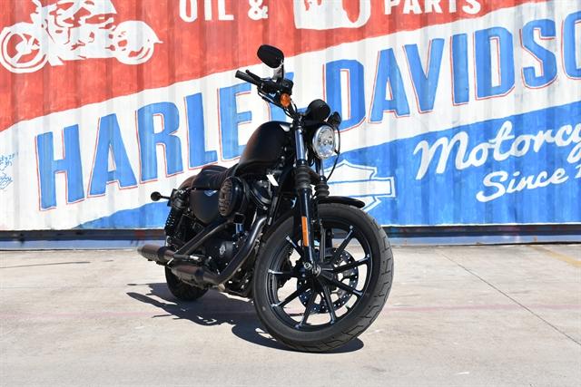 2020 Harley-Davidson XL883N at Gruene Harley-Davidson