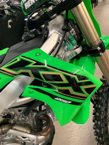 2021 Kawasaki KX250 250 at Powersports St. Augustine