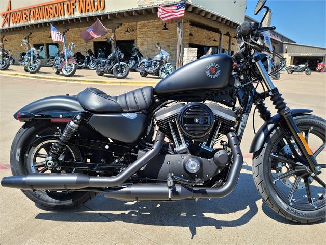 2021 Harley-Davidson Street XL 883N Iron 883 at Harley-Davidson of Waco