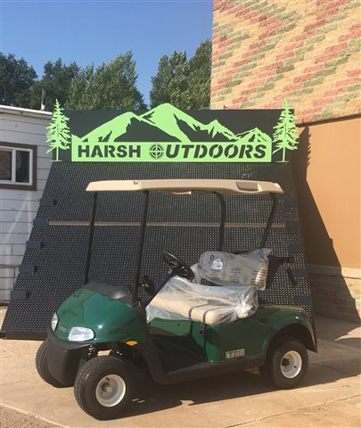 2017 E-Z-GO Elite Freedom RXV Freedom RXV at Harsh Outdoors, Eaton, CO 80615