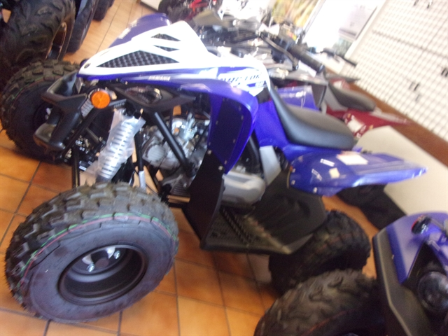 2020 Yamaha Raptor 90 at Bobby J's Yamaha, Albuquerque, NM 87110