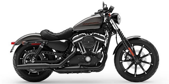 2019 Harley-Davidson Sportster® Iron 883™ at Destination Harley-Davidson®, Tacoma, WA 98424