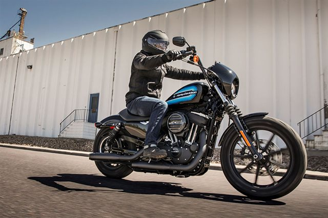 2019 Harley-Davidson Sportster Iron 1200 at Williams Harley-Davidson