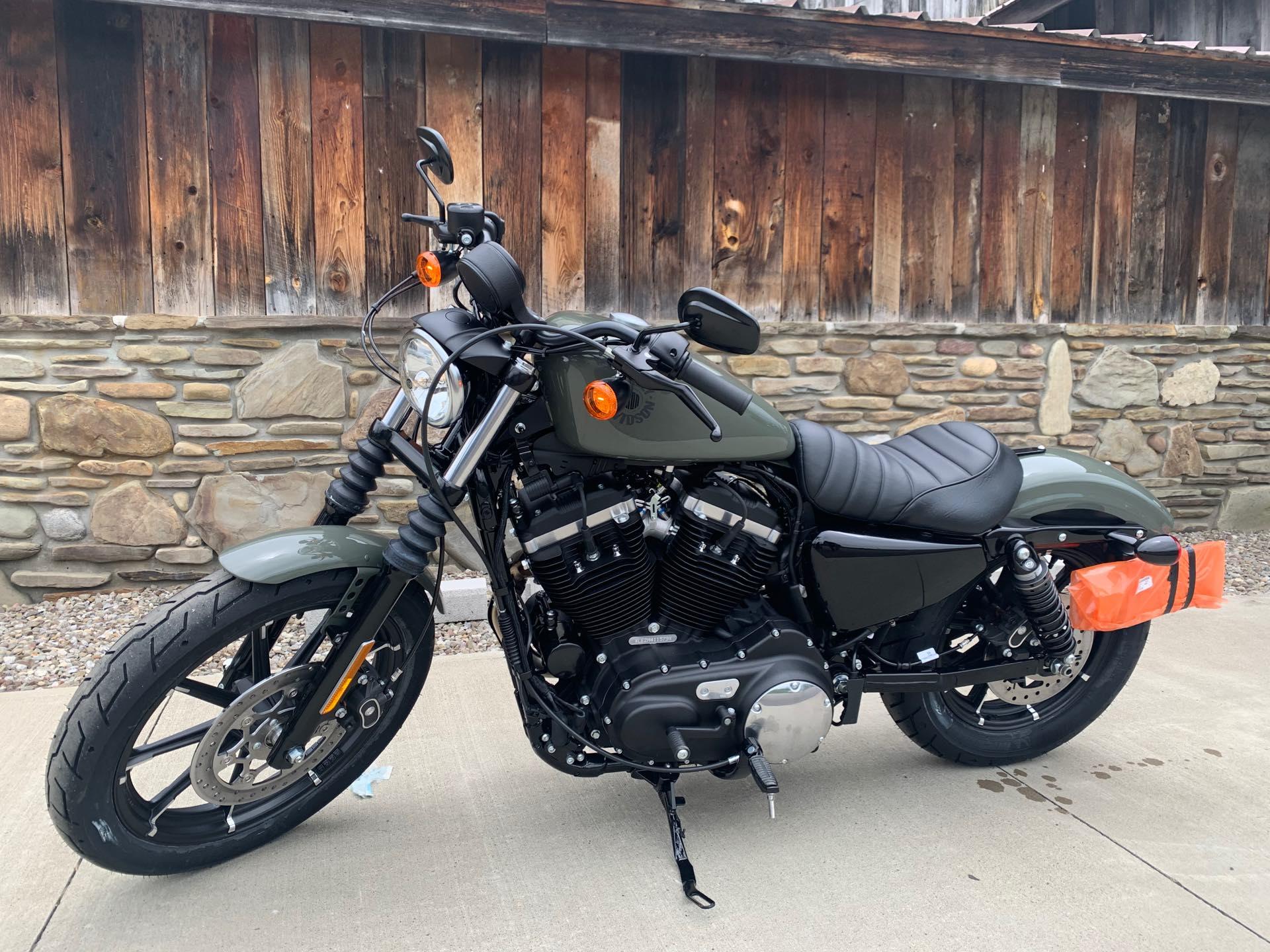 2021 Harley-Davidson Street XL 883N Iron 883 at Arkport Cycles