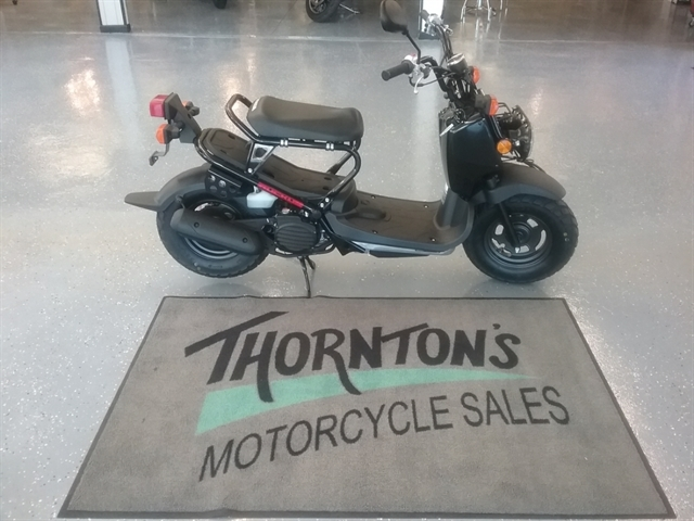 2019 Honda Ruckus Base at Thornton's Motorcycle - Versailles, IN