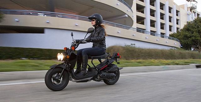 2019 Honda Ruckus Base at Thornton's Motorcycle - Versailles, IN