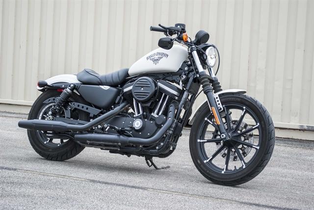 2018 Harley-Davidson Sportster Iron 883 at Javelina Harley-Davidson