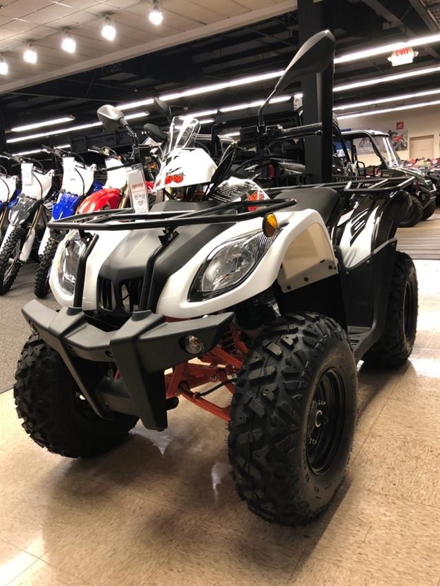 2021 Kayo BULL 200 at Sloans Motorcycle ATV, Murfreesboro, TN, 37129