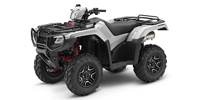 2019 HONDA FourTrax Foreman Rubicon Auto DCT EPS at Bay Cycle Sales