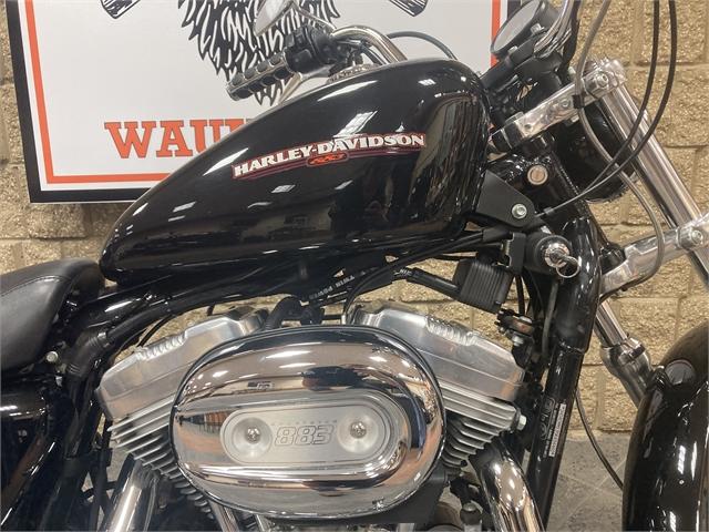2005 Harley-Davidson Sportster 883 Low at Iron Hill Harley-Davidson