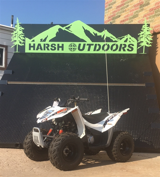 2016 Arctic Cat 90 DVX at Harsh Outdoors, Eaton, CO 80615
