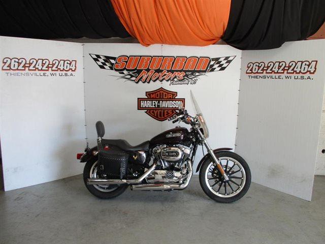 2007 Harley-Davidson Sportster 1200 Low at Suburban Motors Harley-Davidson