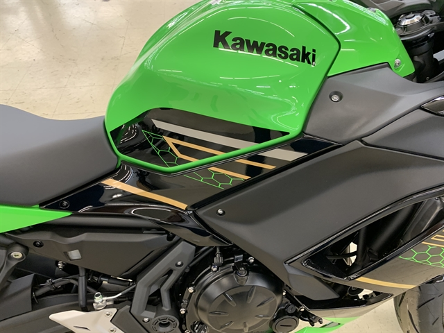 2020 KAWASAKI EX650NLF at Columbia Powersports Supercenter