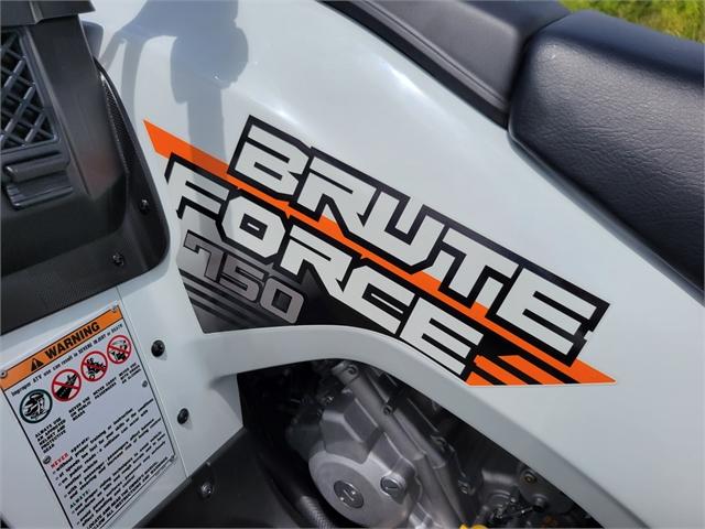 2021 Kawasaki Brute Force 750 4x4i EPS at Powersports St. Augustine